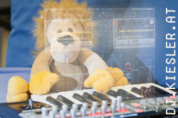 DJ House Lion